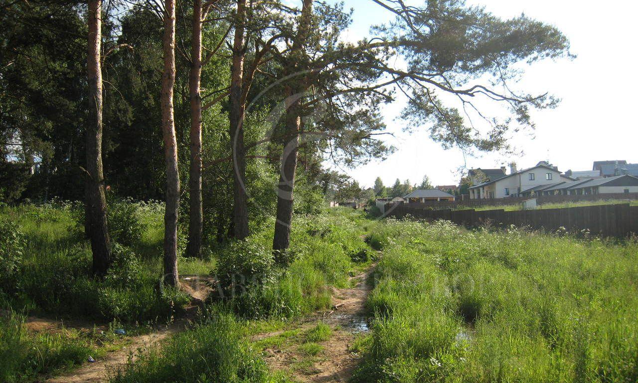На продажу лесной участок на Рублево-Успенском шоссе
