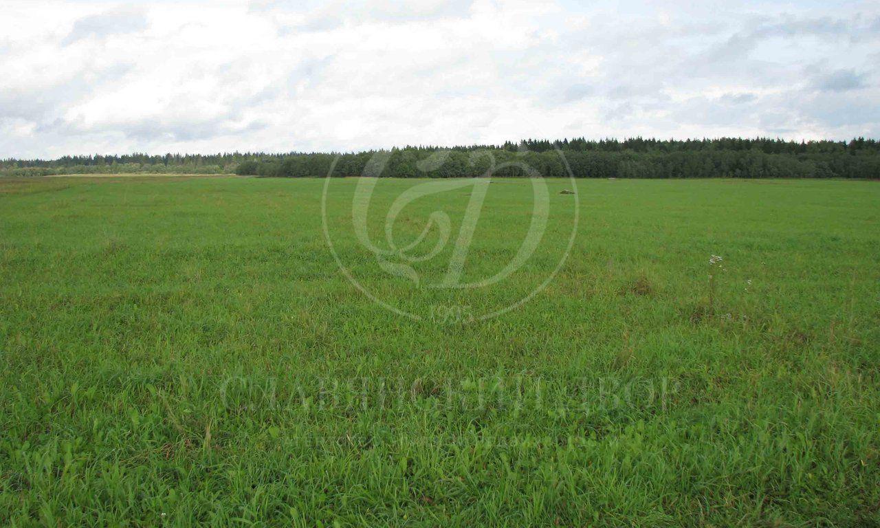 Полевой участок впоселке Ново-Николин