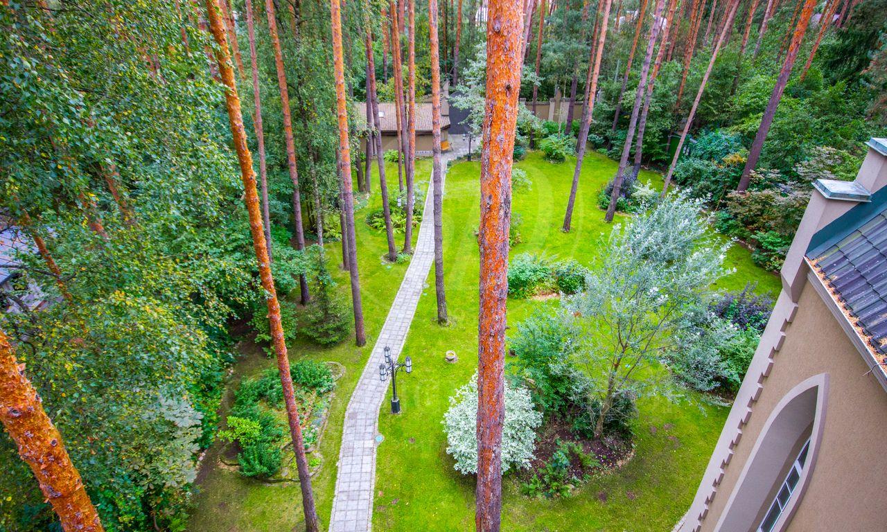 Готический стиль вроскошном лесу