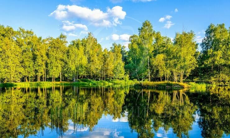Продажа участка впоселке Никольская слобода