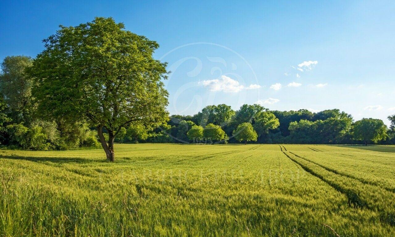 Прилесной участок вохраняемом поселке