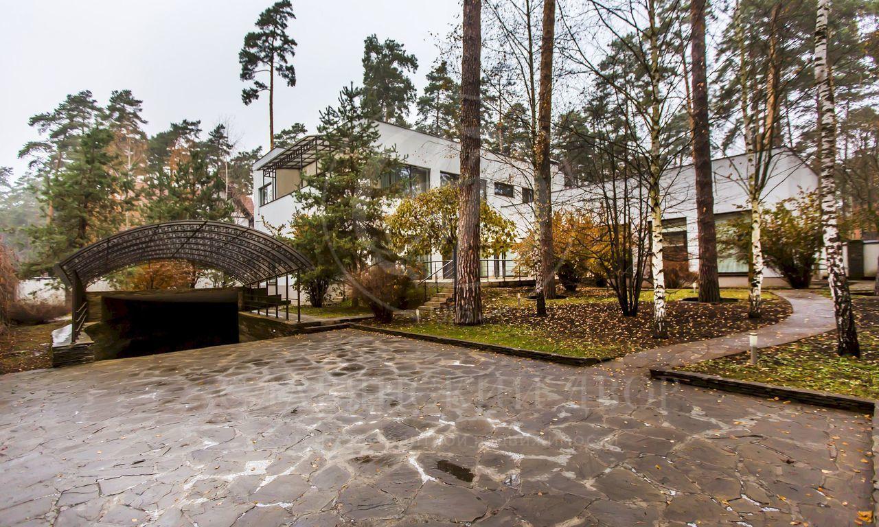 современная архитектура всосновом лесу
