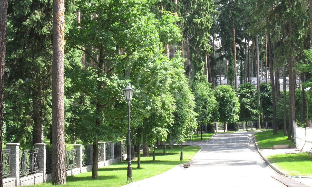 Продажа участка впоселке Сады Майендорф (бывшая территория санатория Барвиха), Рублево-Успенское шоссе