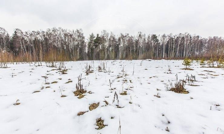 Продажа участка впоселке Павлово-2, Новорижское шоссе